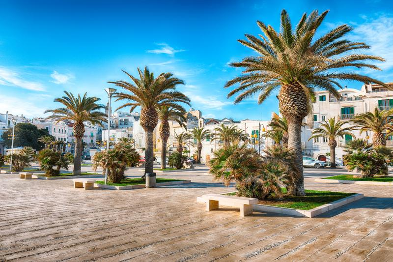 Historic central city of the beautiful town called Vieste stock images