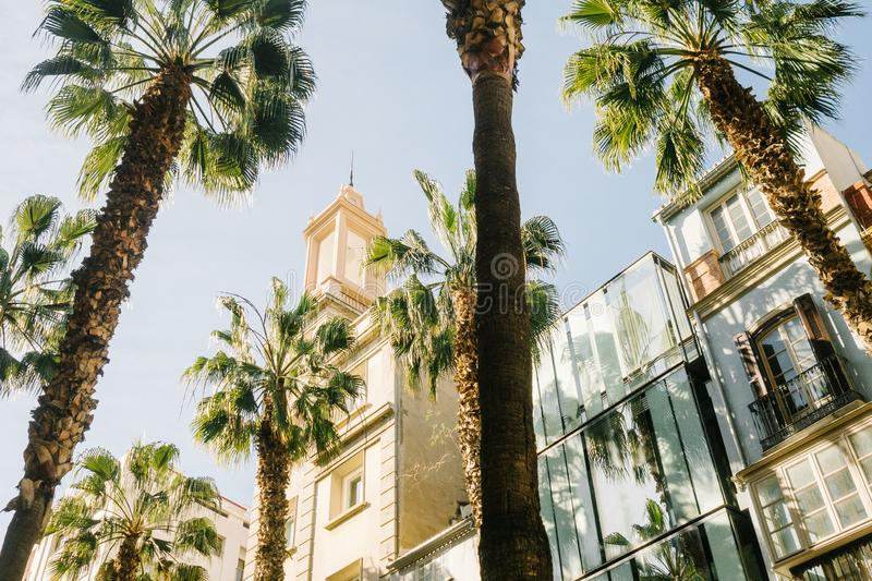 Historic city center of malaga, Andalusia in Spain royalty free stock photos