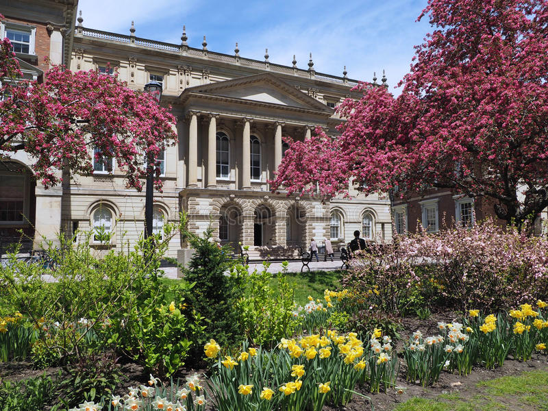 Historic Osgoode Hall Court House, Toronto. With spring blossoms stock image