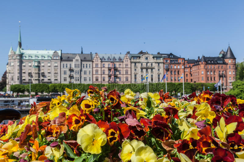 Historical Building Stockholm Oscar Church Sweden. The historical building facades framed by colorful yellow and red flowers. Stockholm, Sweden stock image
