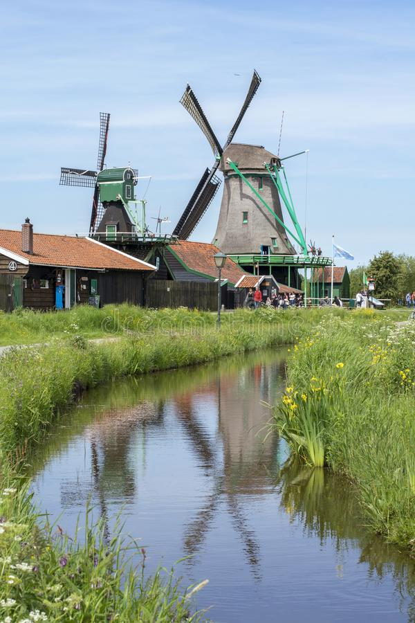 Historical dutch mills with the reflection. In the water royalty free stock images