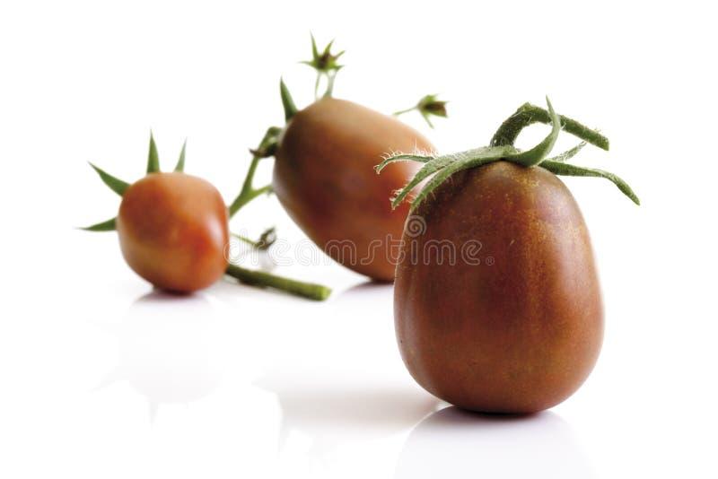 Historical tomatoes, Black Plum, close-up stock photos