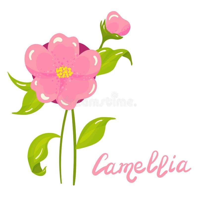 Historieta Camellia Flower Illustration ilustración del vector
