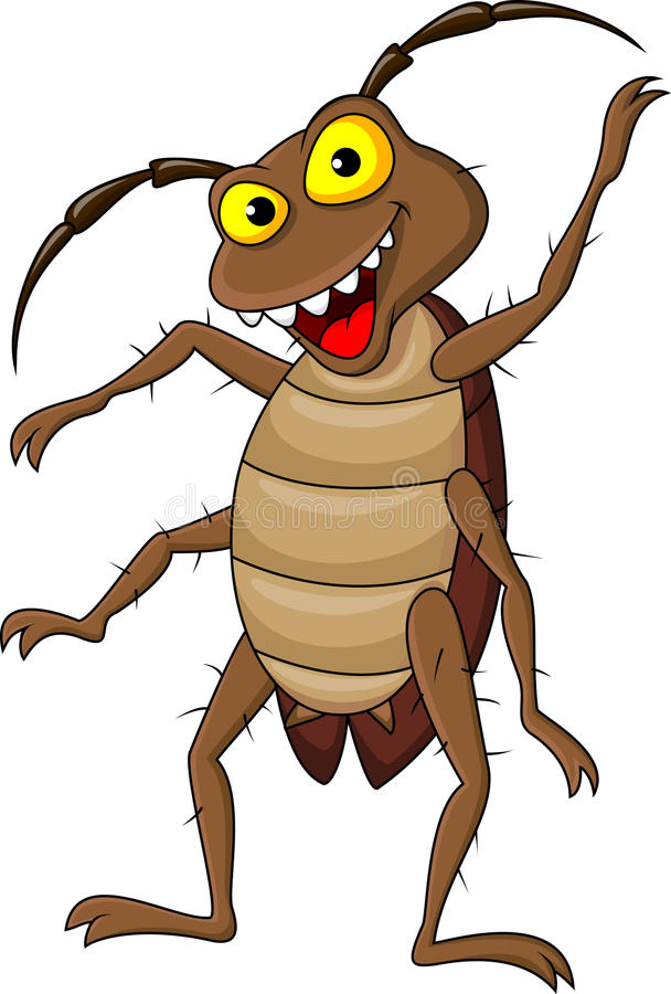 Historieta de la cucaracha libre illustration