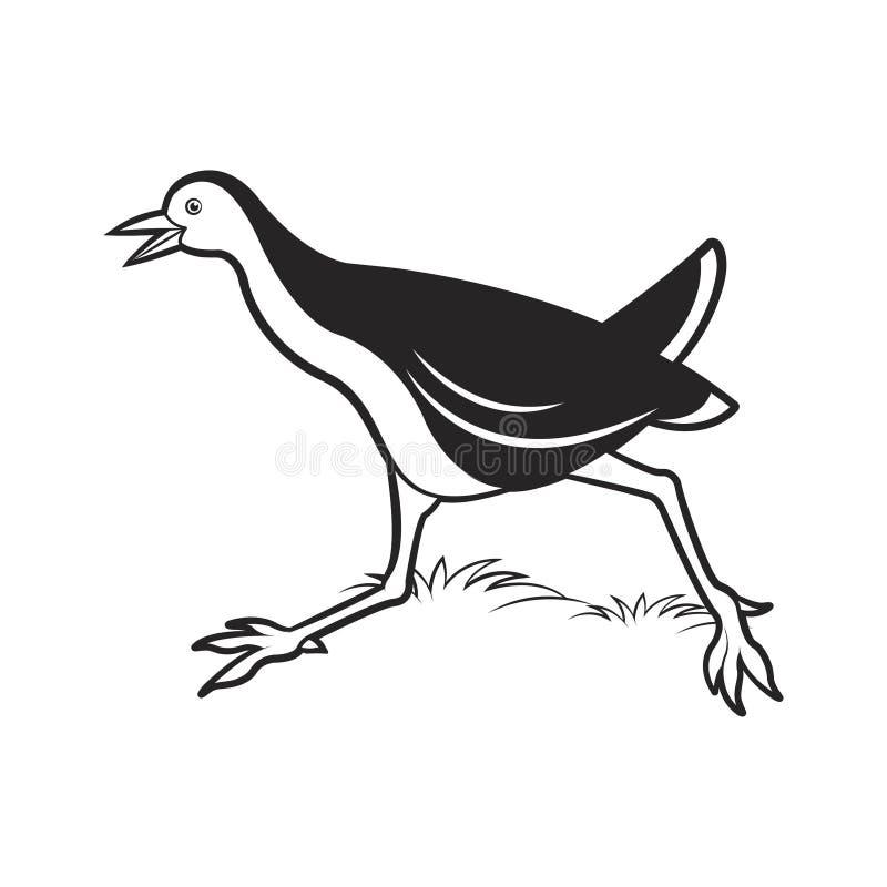 Historieta de la gallina de agua que corre rápidamente stock de ilustración