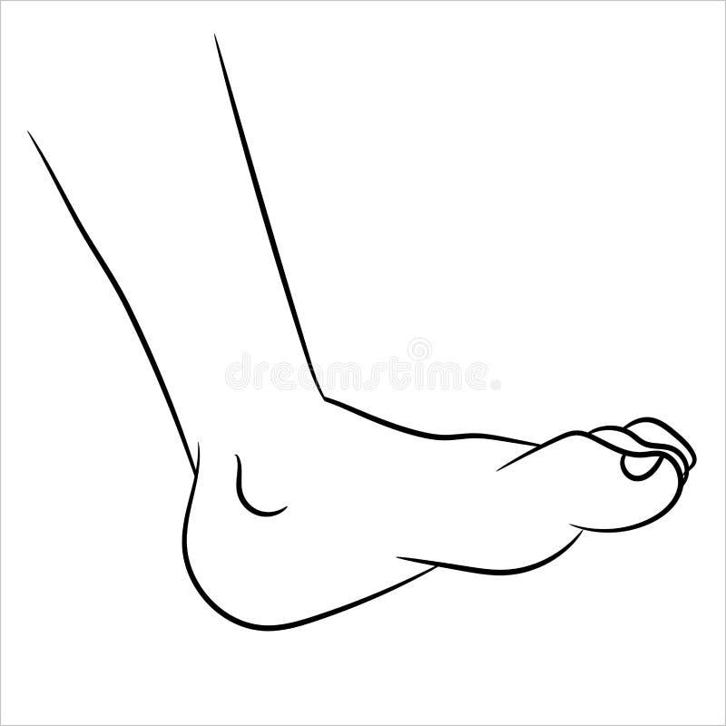 Historieta del pie - línea vector dibujado ilustración del vector
