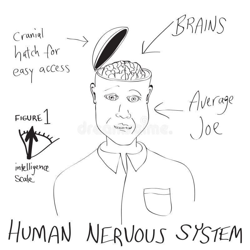Historieta divertida del cerebro humano stock de ilustración