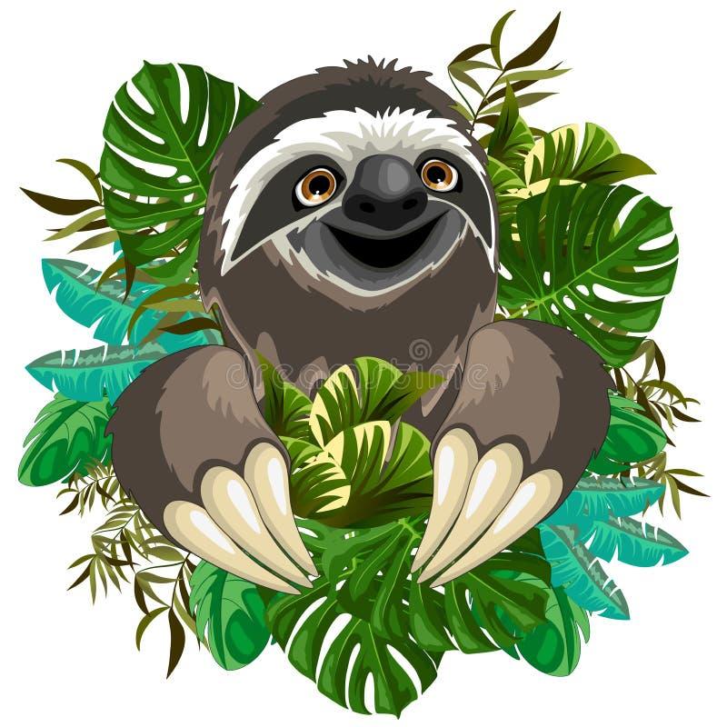 Historieta linda de la pereza en la naturaleza tropical stock de ilustración