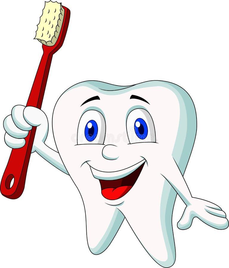 Historieta linda del diente que sostiene el cepillo de dientes ilustración del vector