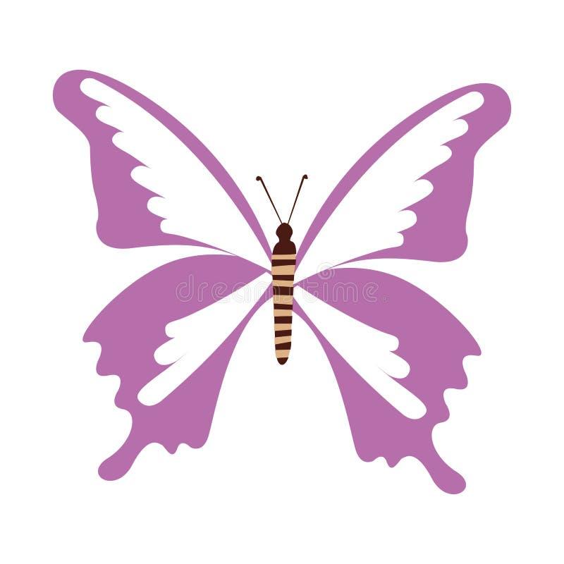 Historieta púrpura linda de la mariposa libre illustration