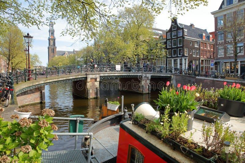 Historische Gebäude entlang Prinsengracht-Kanal mit Westerkerk-Kirchen-Glockenturm im Hintergrund und bunten die Blumen und die A stockbild