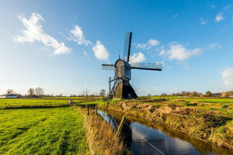 Historische hölzerne hohle Bockwindmühle in einer niederländischen Polderlandschaft lizenzfreies stockbild