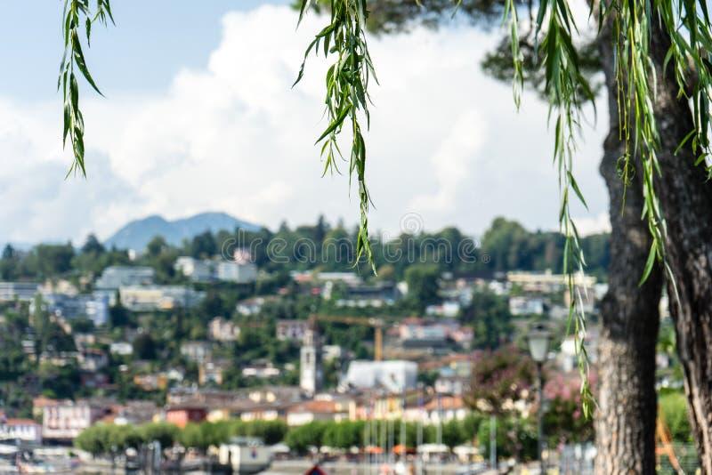Historische Mittelmeerstadtansicht Ascona am See Maggiore nahe Locarno im Kanton Tessin in der Schweiz lizenzfreies stockbild