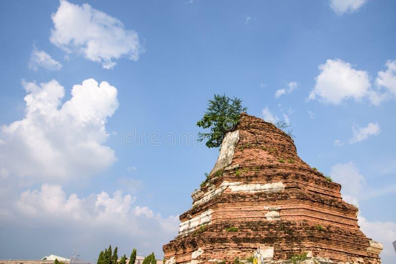 Historische Pagode der thailändischen Geschichte stockbilder