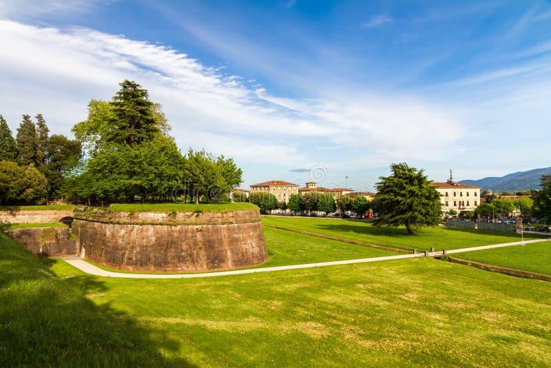 Historische stadsmuur in Luca, Italië stock afbeelding