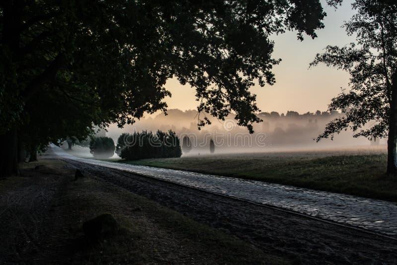 Historische Straße bei Sonnenaufgang nahe dem Dorf von Wilsede stockbilder