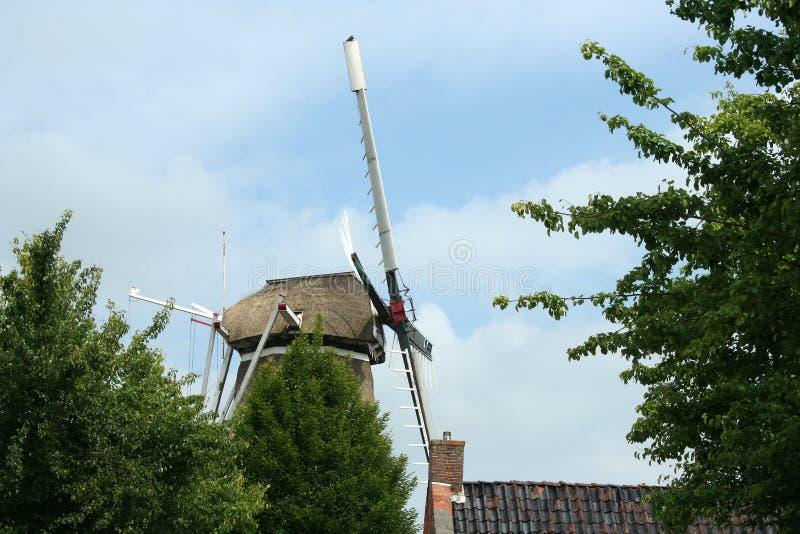 Historische windmolen DE Vriendschap in Winsum Groningen stock fotografie