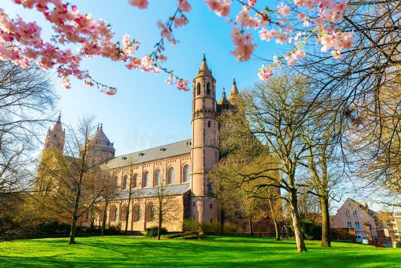 Historische Wurm-Kathedrale in den Würmern, Deutschland stockfoto