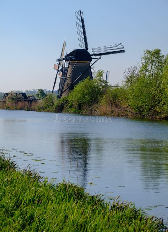 Historiska väderkvarnar med gräs i förgrund på Kinderdijk, Holland, Nederländerna, en UNESCOvärldsarv royaltyfri foto