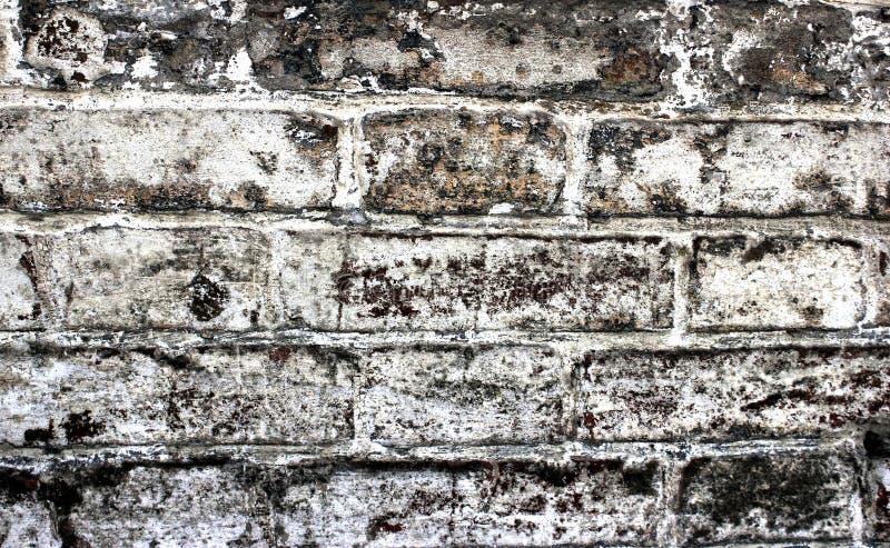 Historiskt murverk för bakgrund av byggnaden som är vitt hus arkitektur, struktur, konstruktion arkivbilder