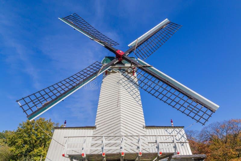 Historyczna Holenderska scena z wiatraczkiem fotografia royalty free