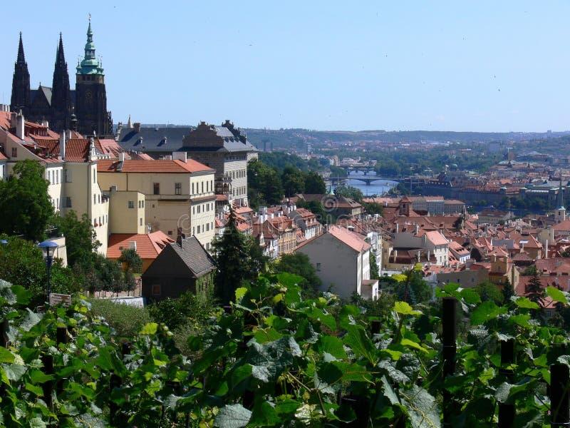 historyczne Prague miasta fotografia royalty free