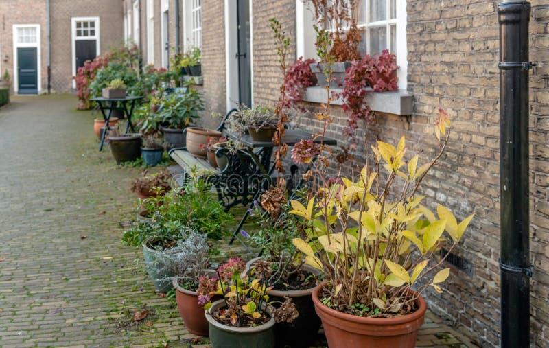 Historyczny Holenderski beguinage w jesiennych kolorach zdjęcie stock