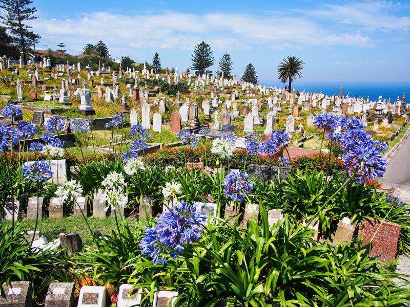 Historyczny Waverley cmentarz, Bronte, Sydney, NSW, Australia zdjęcia royalty free