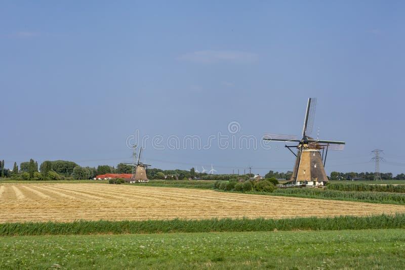 Historyków Holenderscy wiatraczki blisko Rotterdam zdjęcia royalty free
