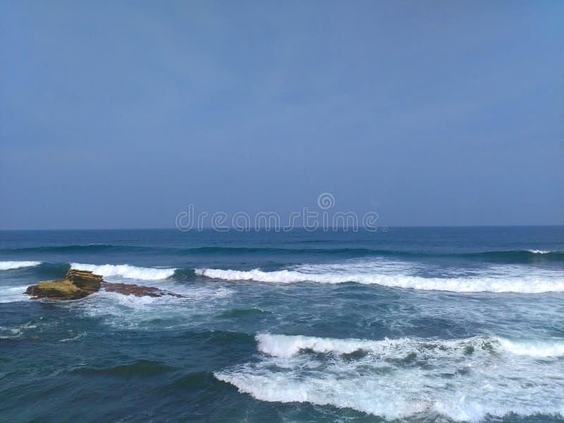 Hiu Java occidental de batu de plage photo libre de droits