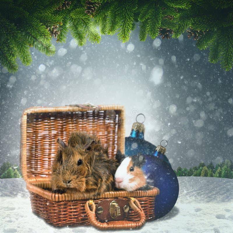 Hiver abstrait et milieux de Noël images libres de droits