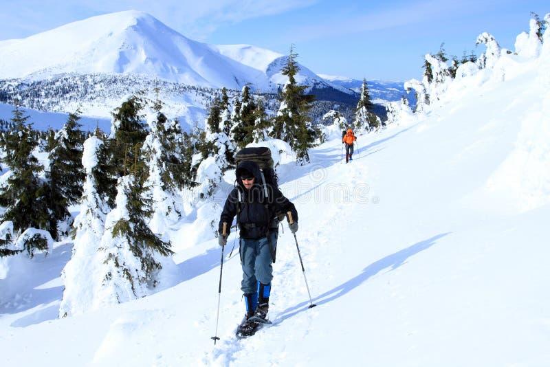 Hiver augmentant dans les montagnes photos libres de droits
