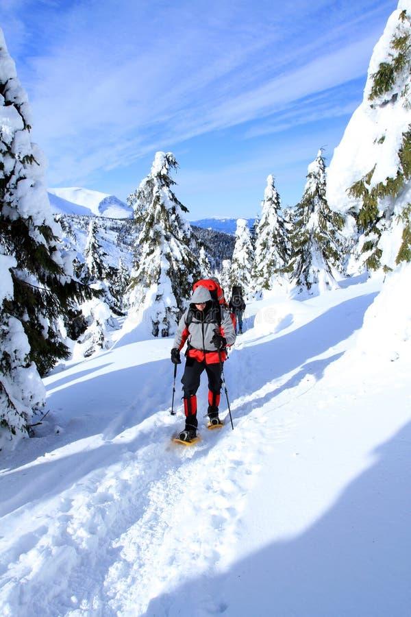 Hiver augmentant dans les montagnes photo libre de droits