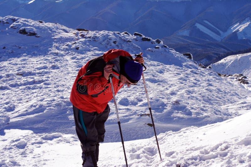 Hiver augmentant dans les montagnes sur des raquettes photographie stock