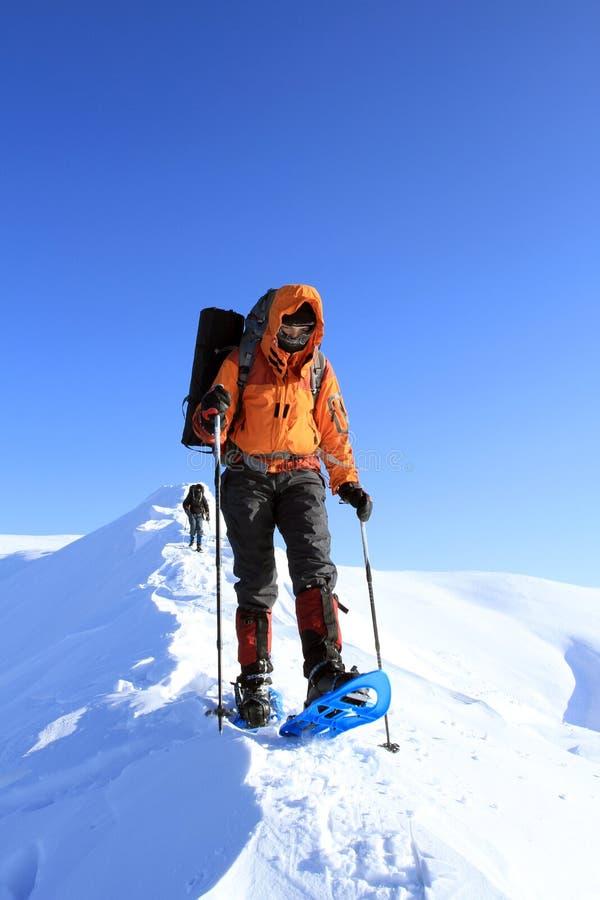 Hiver augmentant dans les montagnes sur des raquettes avec un sac à dos et une tente photo libre de droits