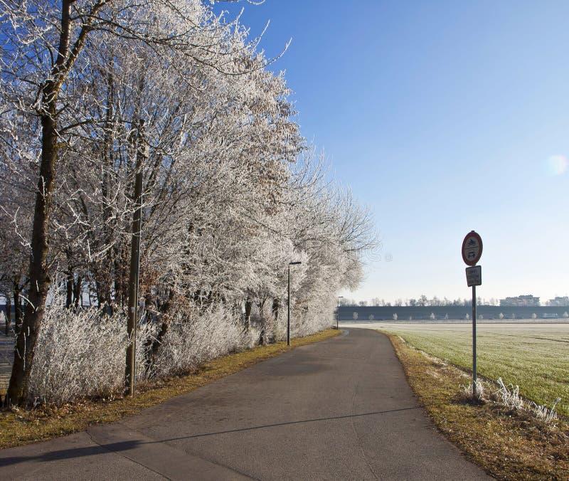 Hiver bavarois, route rurale avec les arbres givrés et froid ensoleillé nous photos libres de droits