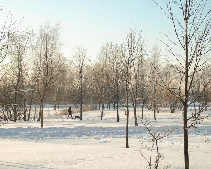 Hiver de Butovo Moscou photographie stock