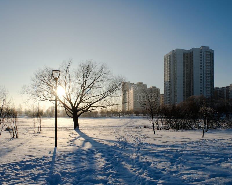 Hiver de Butovo Moscou photographie stock libre de droits