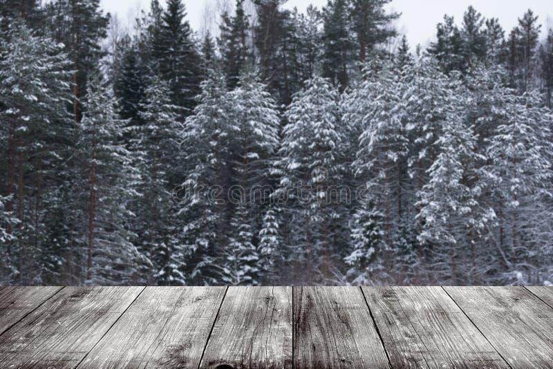 Hiver de Milou à l'arrière-plan de forêt Vue de GA en bois foncé photographie stock libre de droits