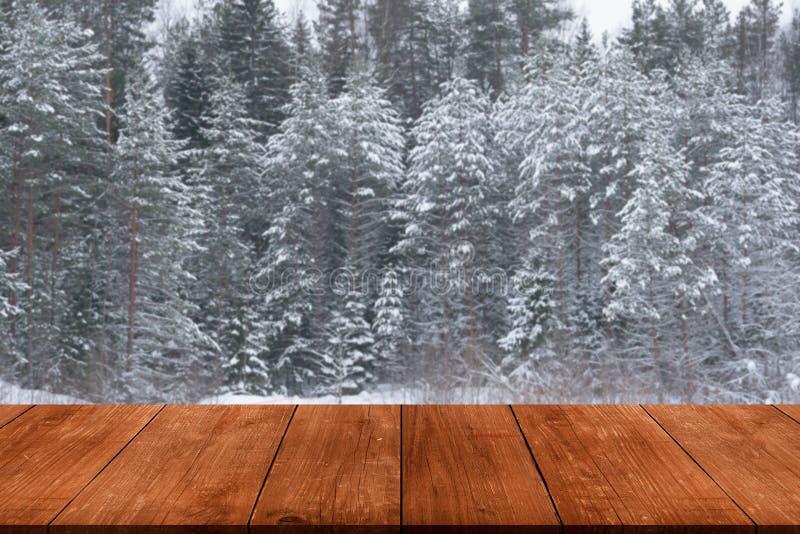 Hiver de Milou à l'arrière-plan de forêt Vue de GA en bois foncé image libre de droits