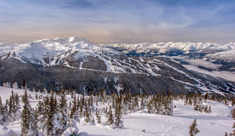 Hiver de montagne de Whistler images libres de droits