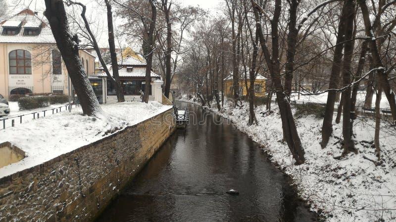 Hiver de rivière de Prague images libres de droits