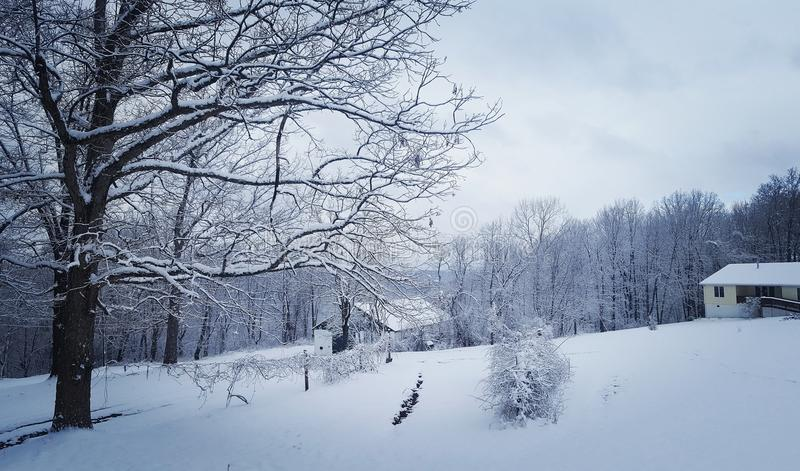 Hiver en Virginie photographie stock libre de droits