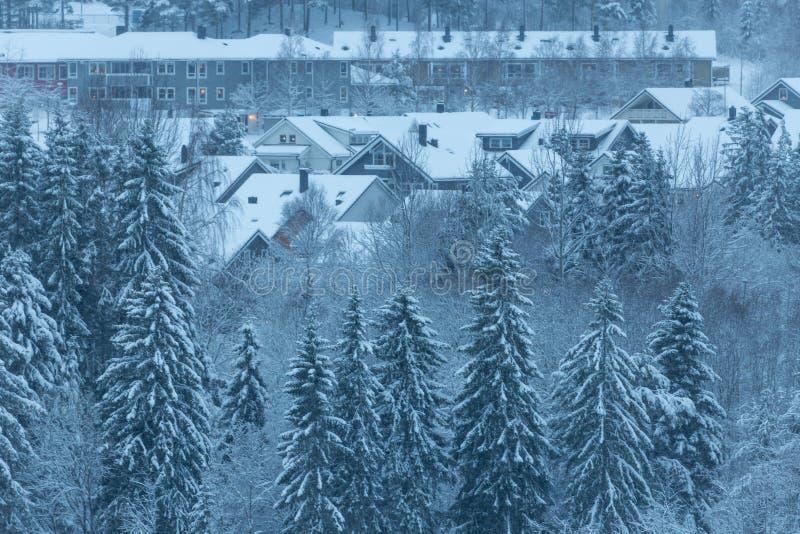 Hiver et for?t neigeuse avec les maisons en bois image stock