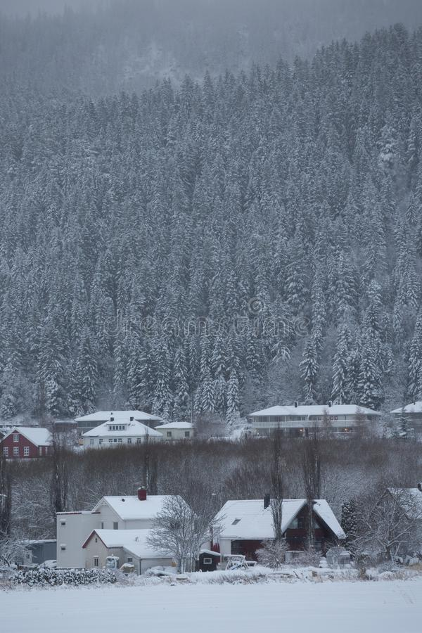 Hiver et for?t neigeuse avec les maisons en bois photos libres de droits