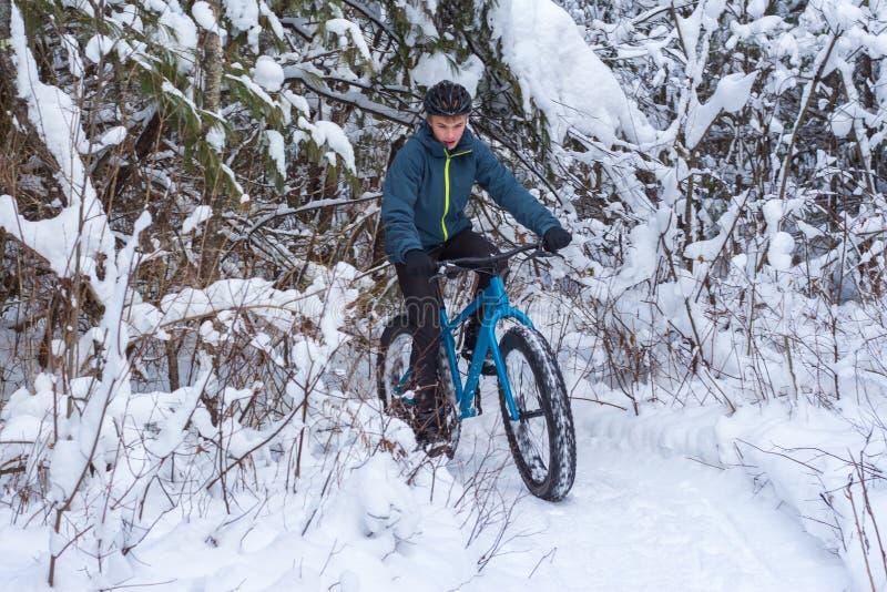 Hiver faisant du vélo dans la forêt images libres de droits