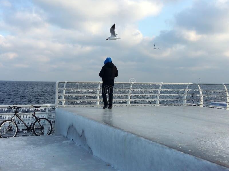 Hiver, gel, pilier couvert de glace, une mouette au-dessus d'un homme image stock