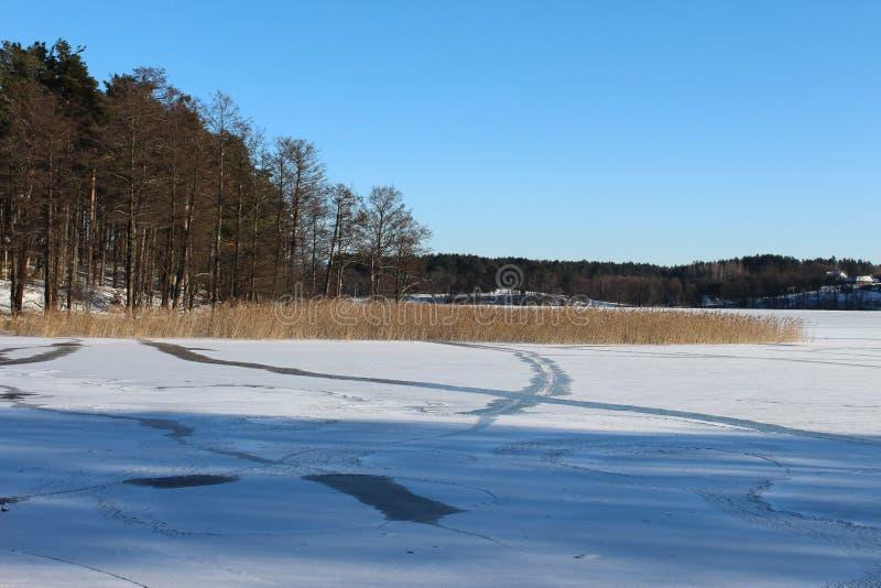 Hiver, lac en hiver, neige, forêt en hiver, arbres dans la neige photos stock