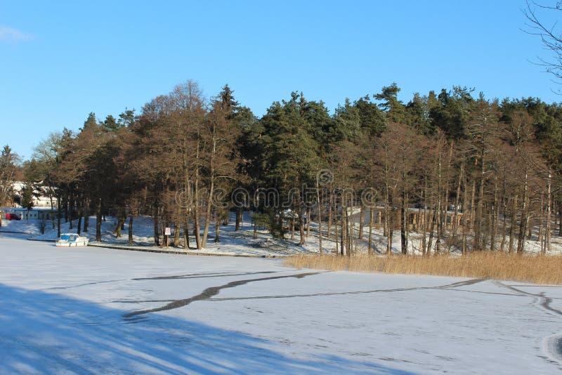 Hiver, lac en hiver, neige, forêt en hiver, arbres dans la neige images libres de droits