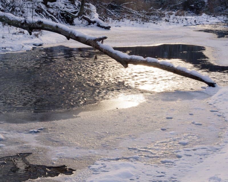Hiver : Lac et rondin congelés photographie stock libre de droits